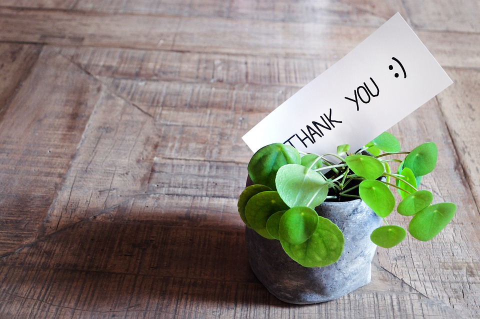 thank-you-3690115_960_720